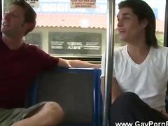 свирки, гей, автобус, публично, сред природата