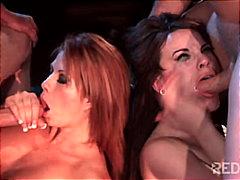 порно звезди, свирки, запушена уста, групов секс