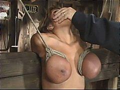 Ава Дивайн, големи цици, садо-мазо, порно звезди