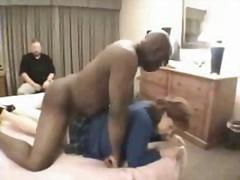 Paroháč Porno