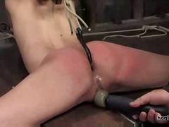 Амбър Рейн, садо-мазо, секс играчки