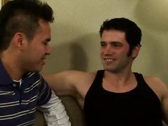 гей, млади гейове, жребец