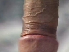 shemale, ass, petit, sucking, anal, big-dick
