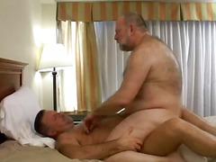 Ursos Porno