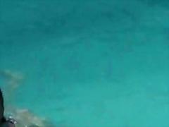 स्विमिंग पूल