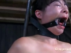 dominering, bondage, ydmygelse, hardcore, bdsm, ekstrem sex