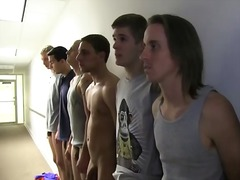 junge, gay, schwesternschaft, party, orgie, college, group
